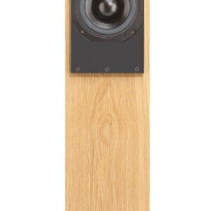 ATC SCM20 ASLT Active Floorstanding Speaker